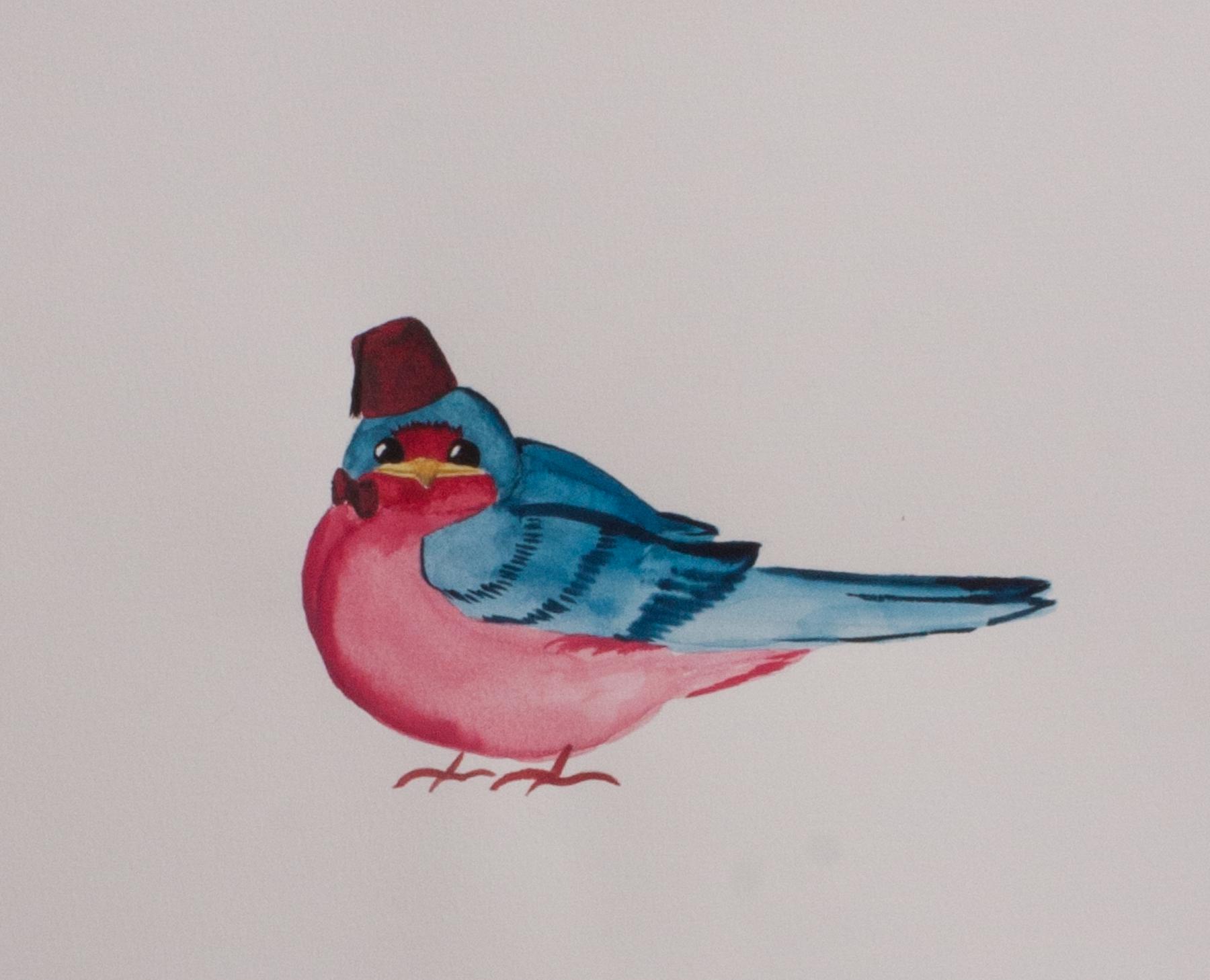 Cool Birds of North America